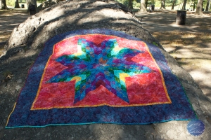 lone star quilt1